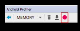 The Record Memory Allocations button