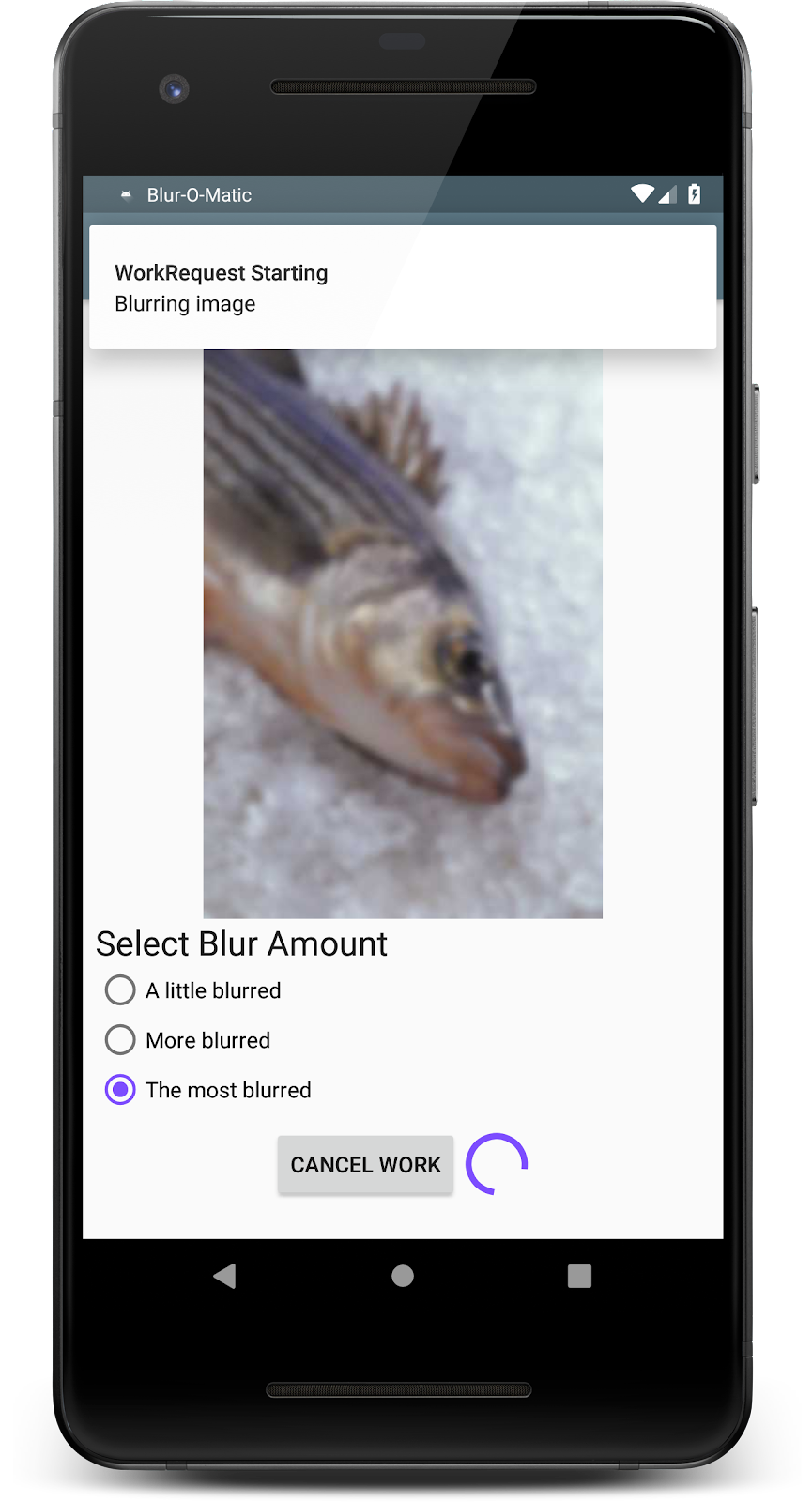 Image of app in the process of running a work request to blur the image seen on screen.