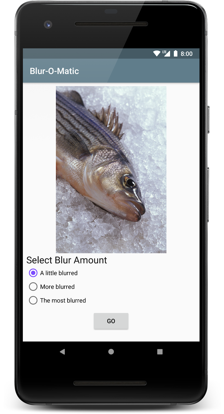 Screen in app that shows after image has been selected. Screen shows selected image, 3 radio buttons on blur amount, and button to start blurring image.