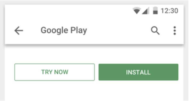 [インストール] ボタンの横にある [今すぐ試す] ボタン